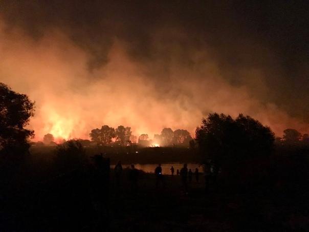 Вблизи Воронежа запылали леса Жуткие кадры присылают подписчики из пригородов столицы Черноземья. Там сегодня вечером неожиданно возникли возгорания в нескольких районах. Пожарные считают, что