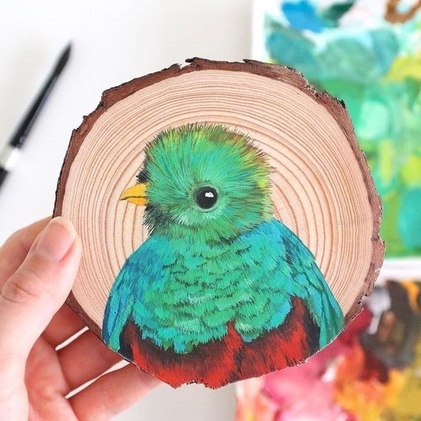 Неудивительно, что птицы с их разноцветным оперением и великолепными крыльями являются источником вдохновения для творческих людей по всему миру Художница и заядлая любительница птиц Деанна Мари