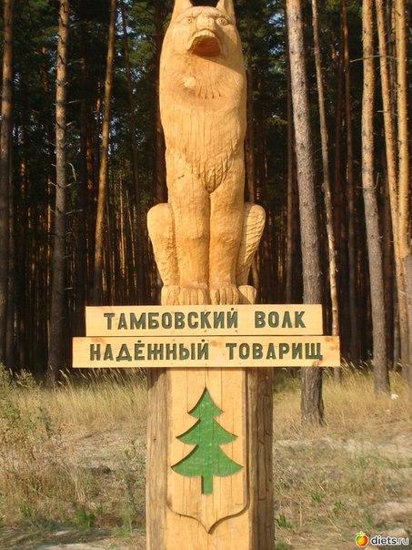 Картинка тамбовский волк тебе не враг тамбовский волк тебе товарищ