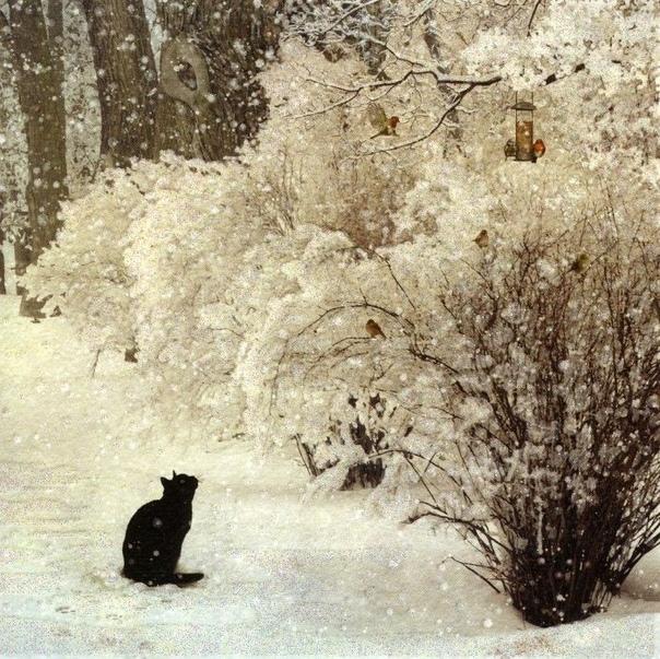 Кошка- это тот же лев, лишь размером поизящней! Jane... liveinternet.ruusers/lara_rimmer/post439139133/ Художница - Jane Crowther Джейн Кроутэр окончила в 1986 году с отличием Политехнический