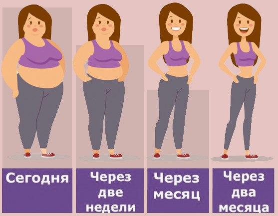 Несколько Простых Правил Для Похудения.