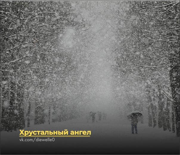 Хрустальный ангел На город медленно падал снег. Он неумолимо засыпал улицы, деревья, дома и человеческие души. Вместо предновогодней суеты на улицах внезапно воцарилась атмосфера спокойствия и