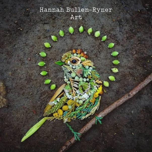 Художница Ханна Буллен-Райнер подчеркивает, как с вниманием к деталям можно создавать потрясающие портреты наших пернатых друзей