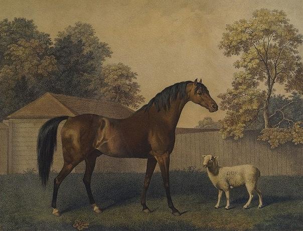 Эта лошадка была написана в натуральную величину